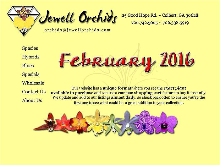 February-2016